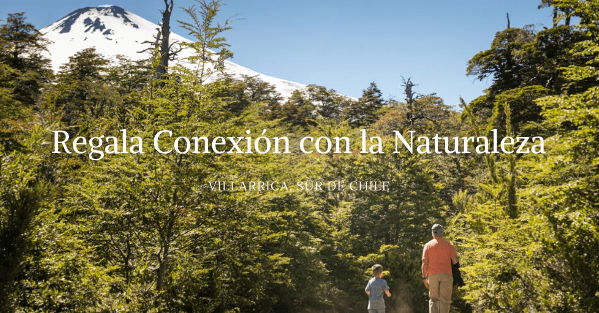 3 Senderos en Villarrica y Pucon para niños y disfrutar en Familia