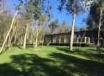 casa-con-bosque-en-pucon-propiedades-en-pucon-5.jpg